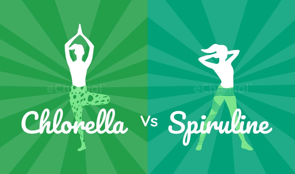 Différences entre la chlorella et la spiruline
