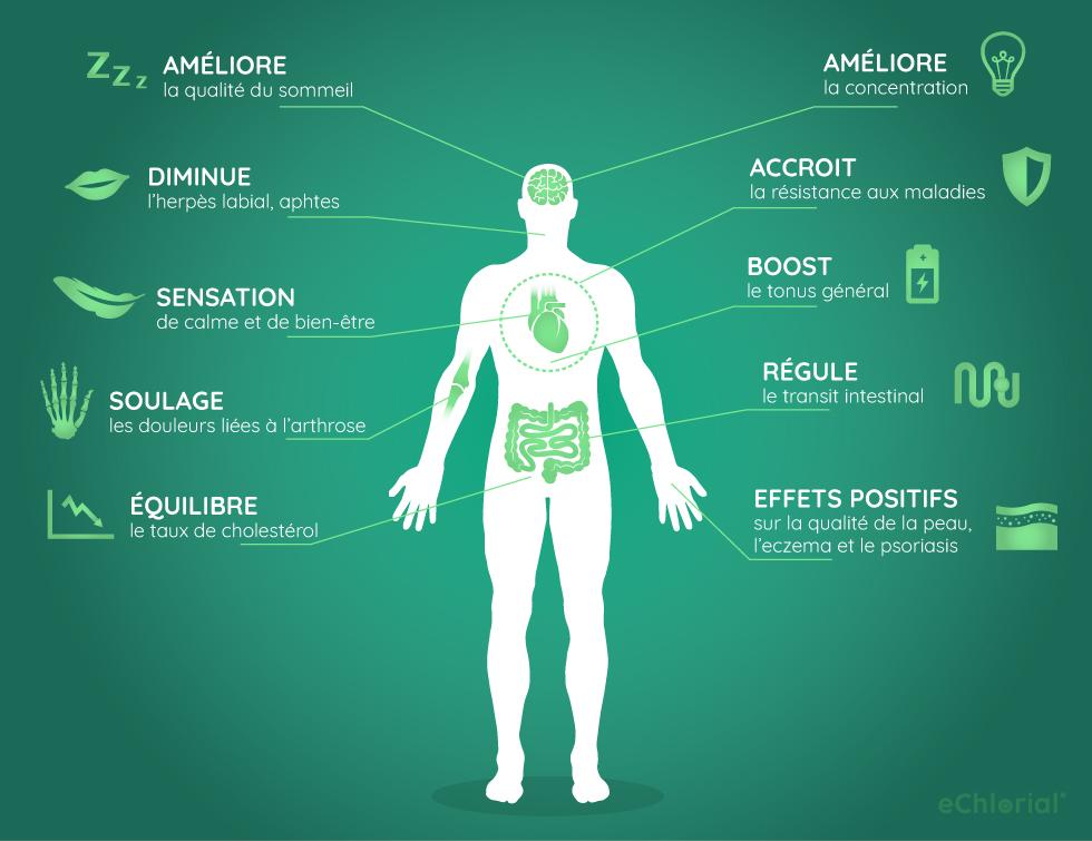 Effets benefiques de la chlorella Infographie: effets bénéfiques de la chlorelle