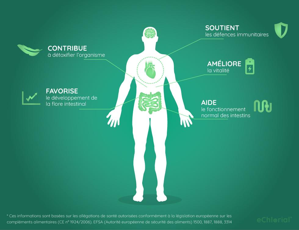 Infographie: effets bénéfiques de la chlorelle