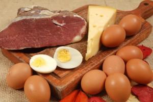 Alimentation riche en graisse