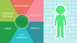 Micro-algues: véritables bombes nutritionnelles