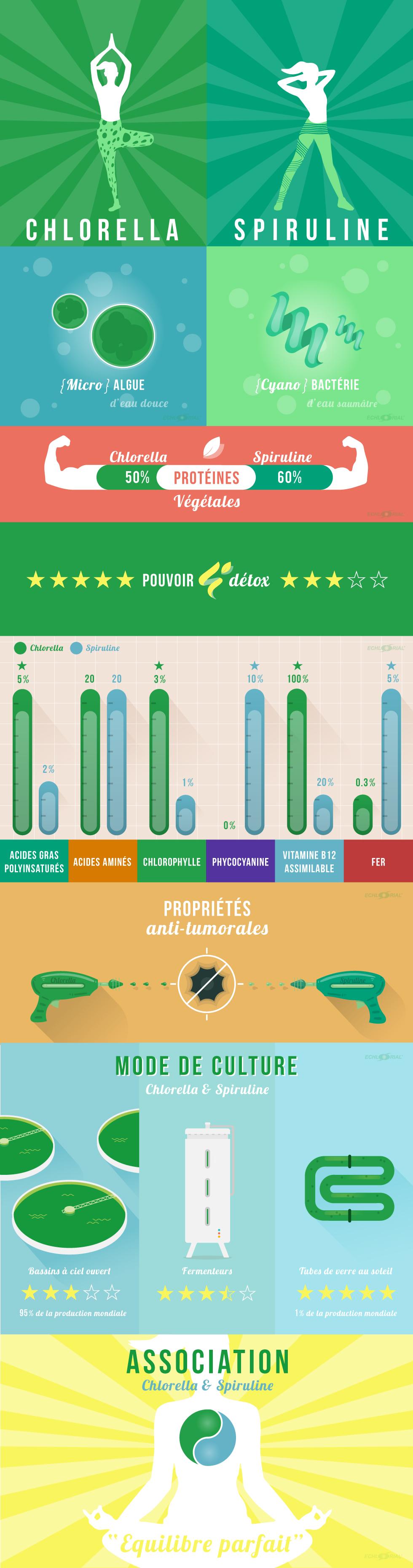 Infographie : différences entre Chlorella et Spiruline