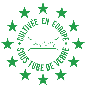 Chlorella Echlorial Certification Qualité Culture en Tube de verre