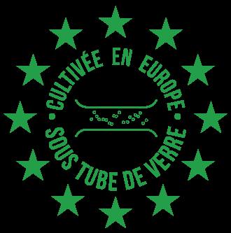 Chlorella Echlorial Certification Qualité Culture en Tube de verre
